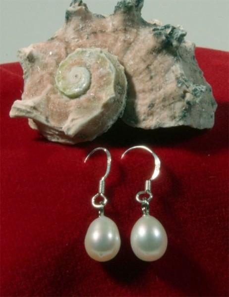 925 Sterling Silber Süßwasser Zucht-Perlen-Ohrringe Hänger - Weiß - ca. 7 mm Durchmesser