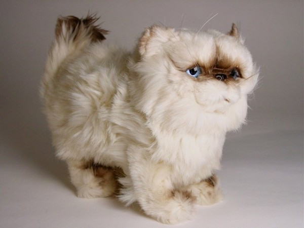 Piutre Stehende Perser Colourpoint Katze 2432 ca.30cm Standing Himalayan Persian cat cm.30